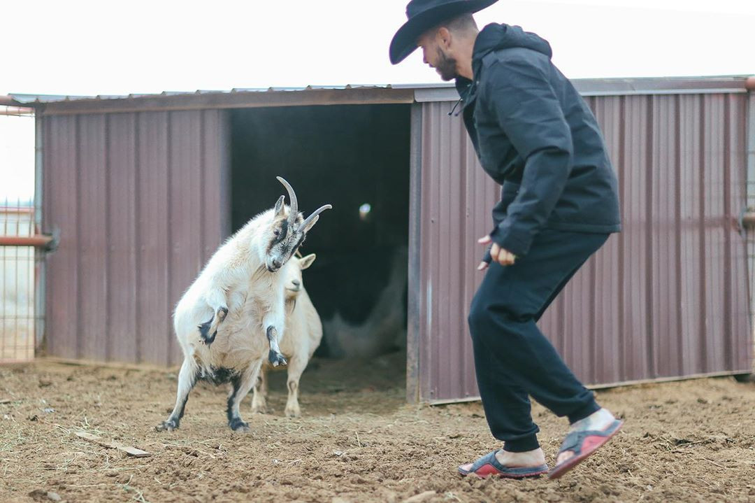 Donald Cerrone asks his fighters to help out with the animals