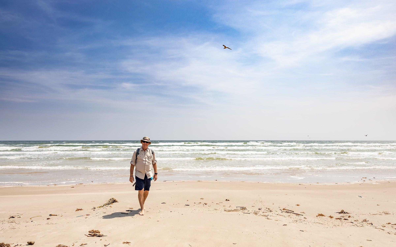 the beachcomber in padre island seashore