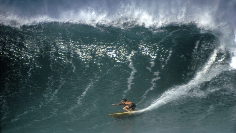 "Coming This Weekend: ""Five Summer Stories"" (1972) – Surfline.com Surf News"