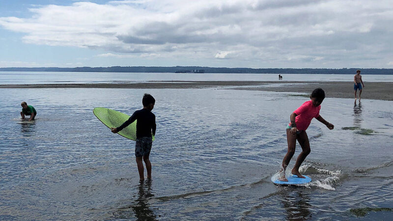 Skimming the shoreline – South Whidbey Record