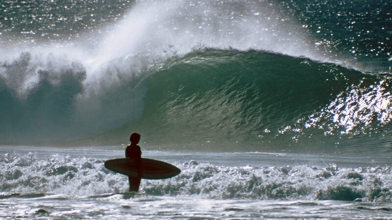 """Coming This Weekend: """"A Sea For Yourself"""" – Surfline.com Surf News"""
