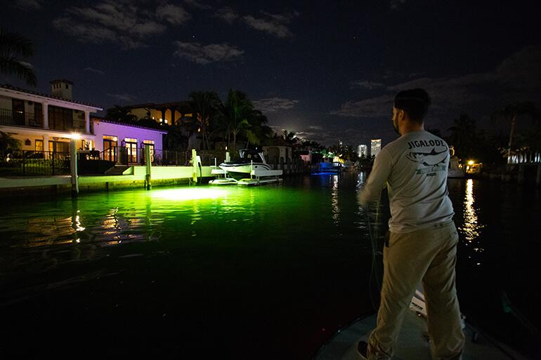 docklight night fishing