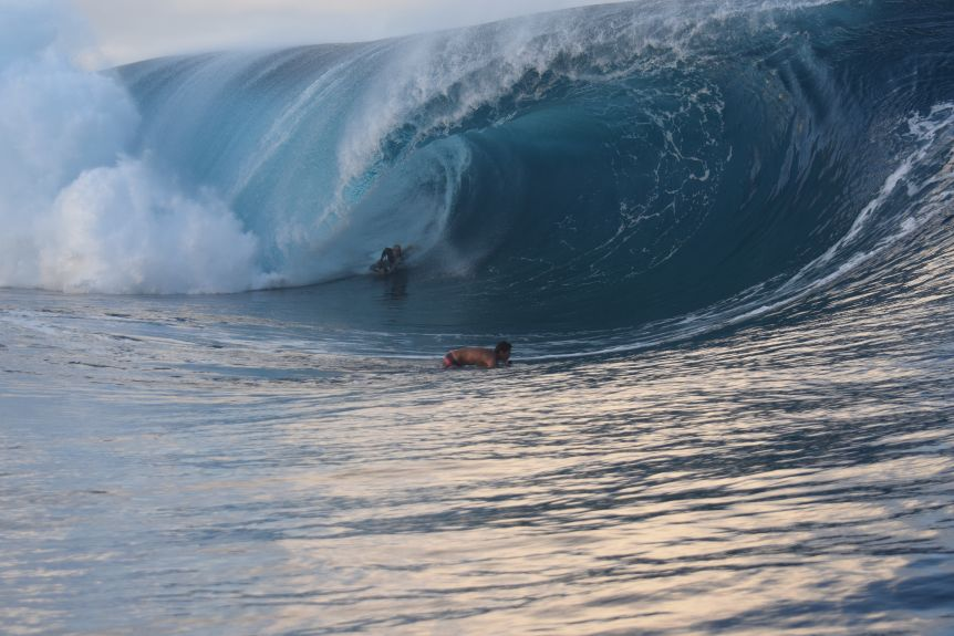 A bodyboarder surfing a huge wave, which is curling over him.