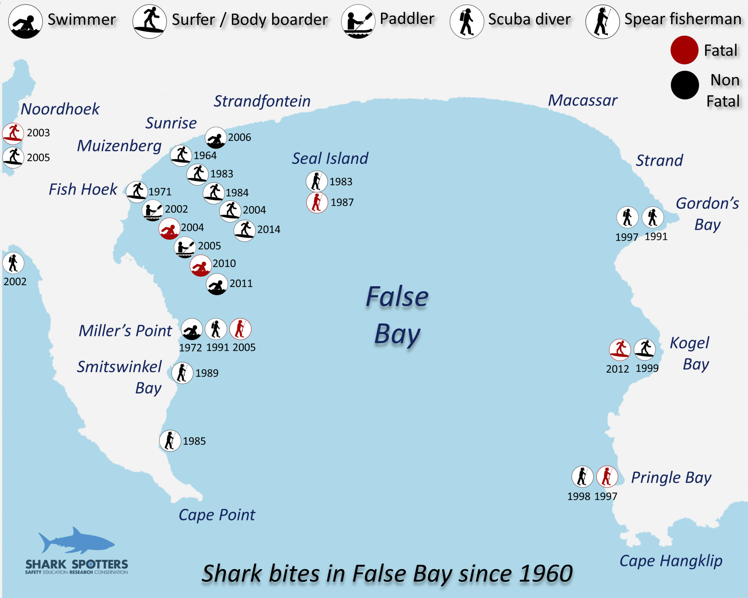Spotted! How a surfer's project turned the tide on shark fear – Daily Maverick